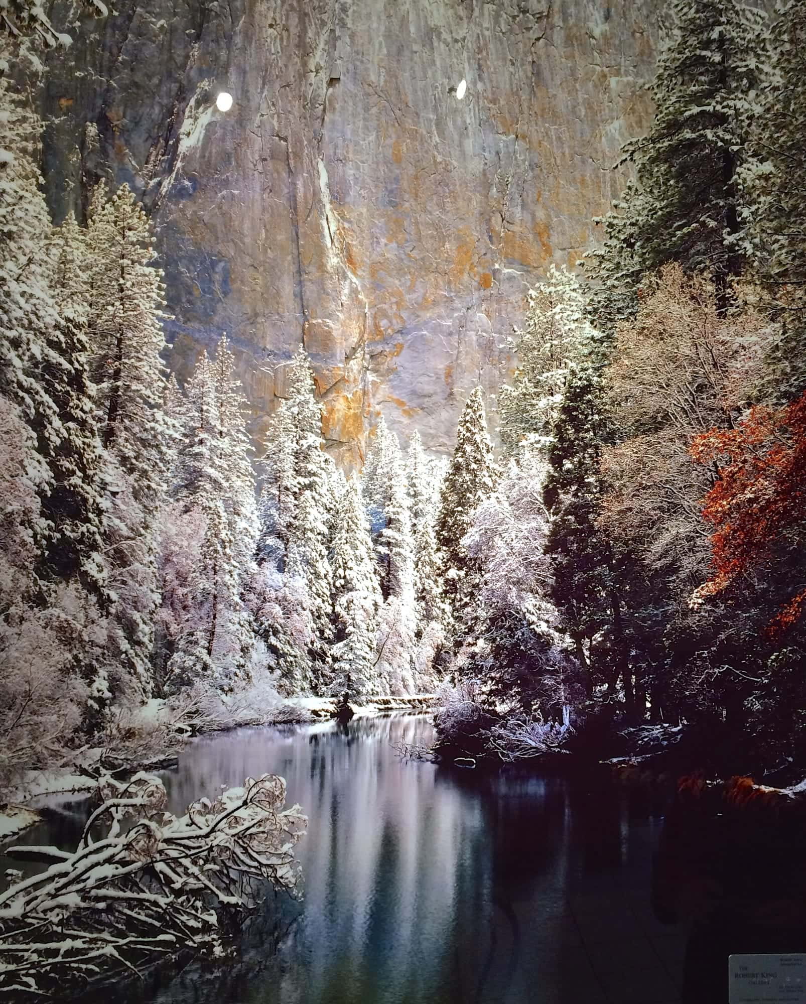 Metal print of Yosemite.